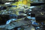 Fall Reflections