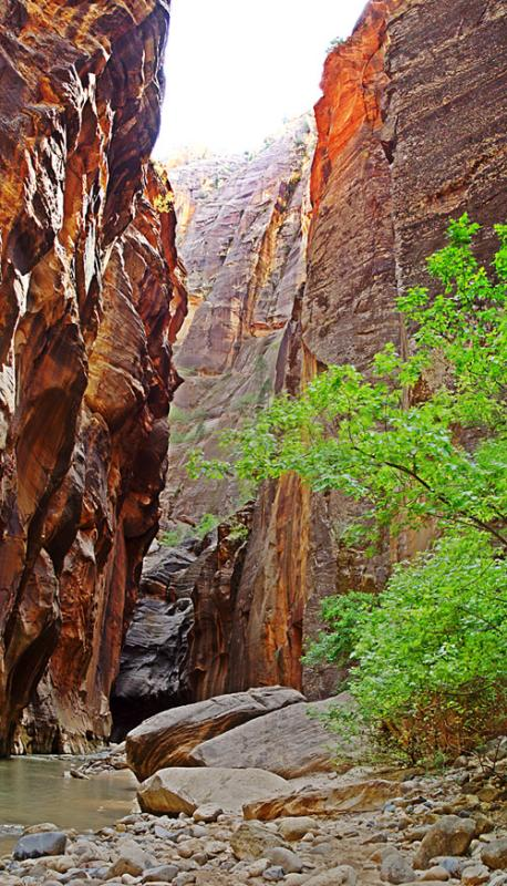<b>Heading to the Narrows, 2</b><br><font size=1>by Howdy</font size>