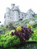 St Michael's Mount Gardens (UK)