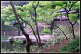 JAPON_025_MED__MED_W.JPG