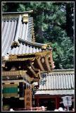 JAPON_029_MED__MED_W.JPG