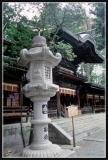 JAPON_037_MED__MED_W.JPG