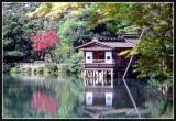JAPON_049_MED__MED_W.JPG
