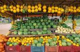 frutas mossoró.jpg
