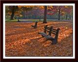 autumnbenches.jpg