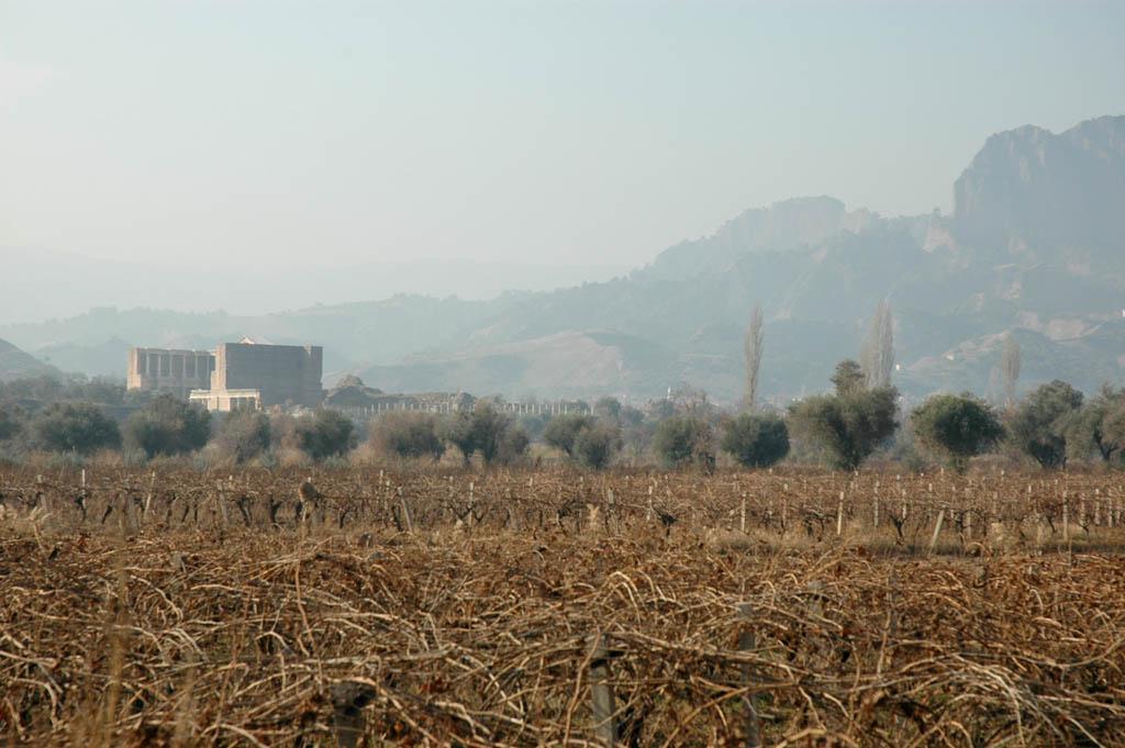Sardis in the fields