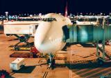 Our QANTAS bird