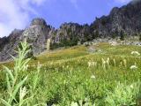 Yellowstone Cliffs
