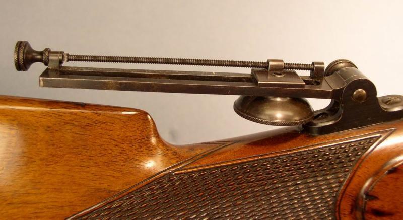 Long Range Tang Sight Detail