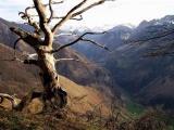 Son ombre tutélaire veille sur la vallée d'Aspe