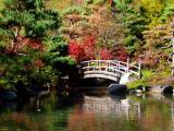 Photoshopping the Colours of Autumn