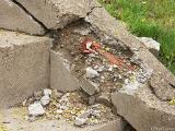 2005-04-21 Damage