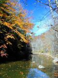 Cranes Nest River