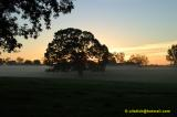 Robertsdale Alabama 2001