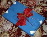 Gift Wrapped by Glass Artist Lonalee Hamlin Jr DSC_2314.jpg