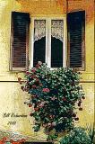 window flower boxedited.jpg