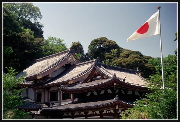 JAPON_021_MED__MED_W.JPG