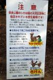 Deer warning, Nara Koen Park