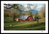 Red barn - springtime