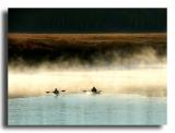 Kayaks in the Mist, Oxbow Bend, the Tetons