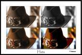 1/8/05 - Hats Off