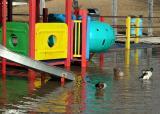 Duck Slide Sarnia Ontario