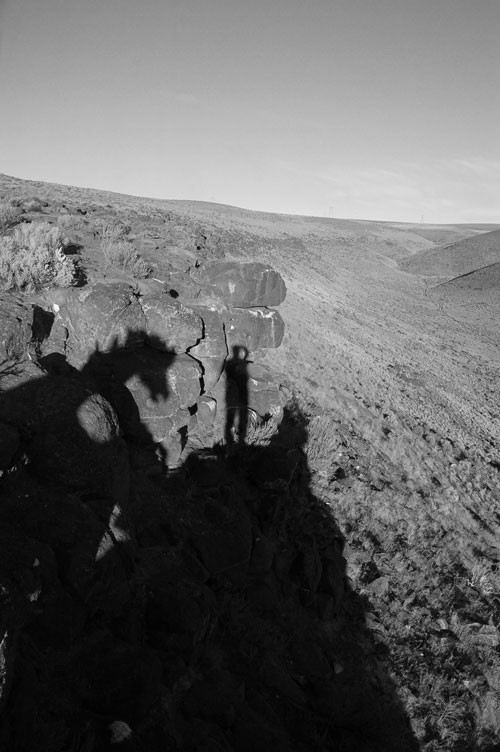 Photographer and Horse Shadows