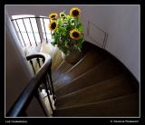 My Staircase