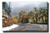 Snow Along Hwy 89a