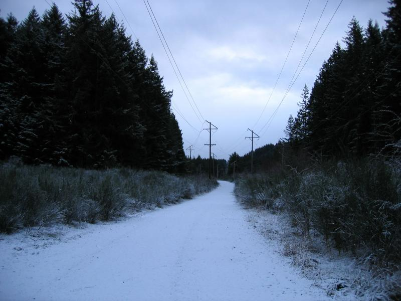 Puget Power Trail