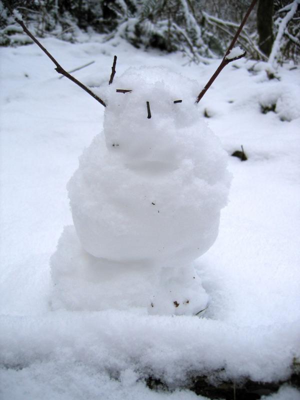 Snow Person 1