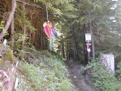 Fawn Ridge aid station - mile 32