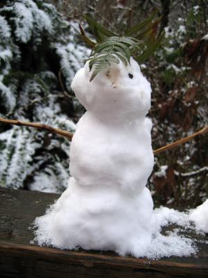 Snow Person 2
