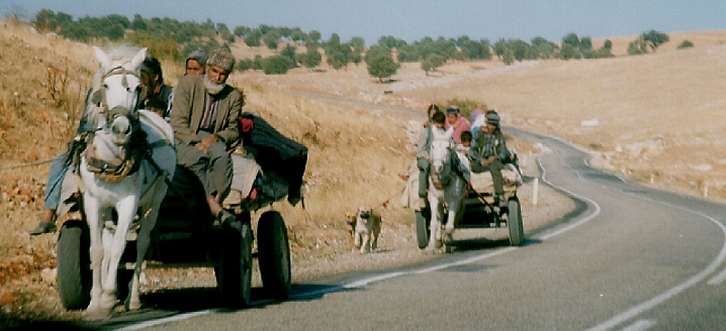 Kurdish Families on the Move (Transportation Challenge)