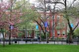 NYU School of Social Work - NE Corner of WSP