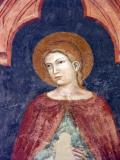 Fresco in San Zeno - Verona (after autolevels )
