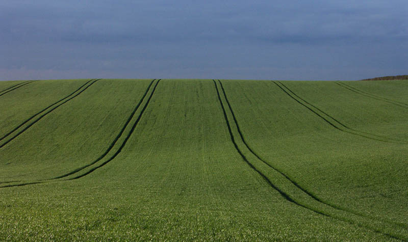 Rolling hills Royston UK