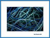 Blue rope, Nogent/Marne