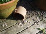Pots and pebbles