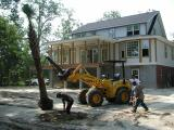 Our first palm tree arrives  07/29/2002