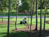 Two firsts - the lawn being mowed,  and Sarah doing the mowing
