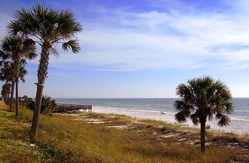 Mexico Beach, Florida 3353