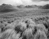 Balnakeil Bay Dunes Scotland