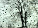 Rain on the window #29443b