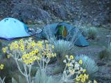 Second camp (4200m)