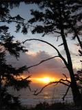 Sunset Spruce Dance  (10-17-04)