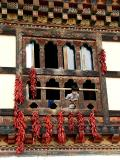 Downtown Paro, 'Girl with 'Ema'