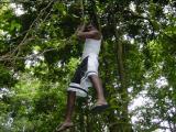 Lowell was climbing the vines like a ghetto Indian Tarzan!
