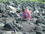 Daughter collecting black sand at beach at Eyrarbakki