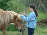 Horse riding at Summer Guesthouse Hússtjórnarskólinn